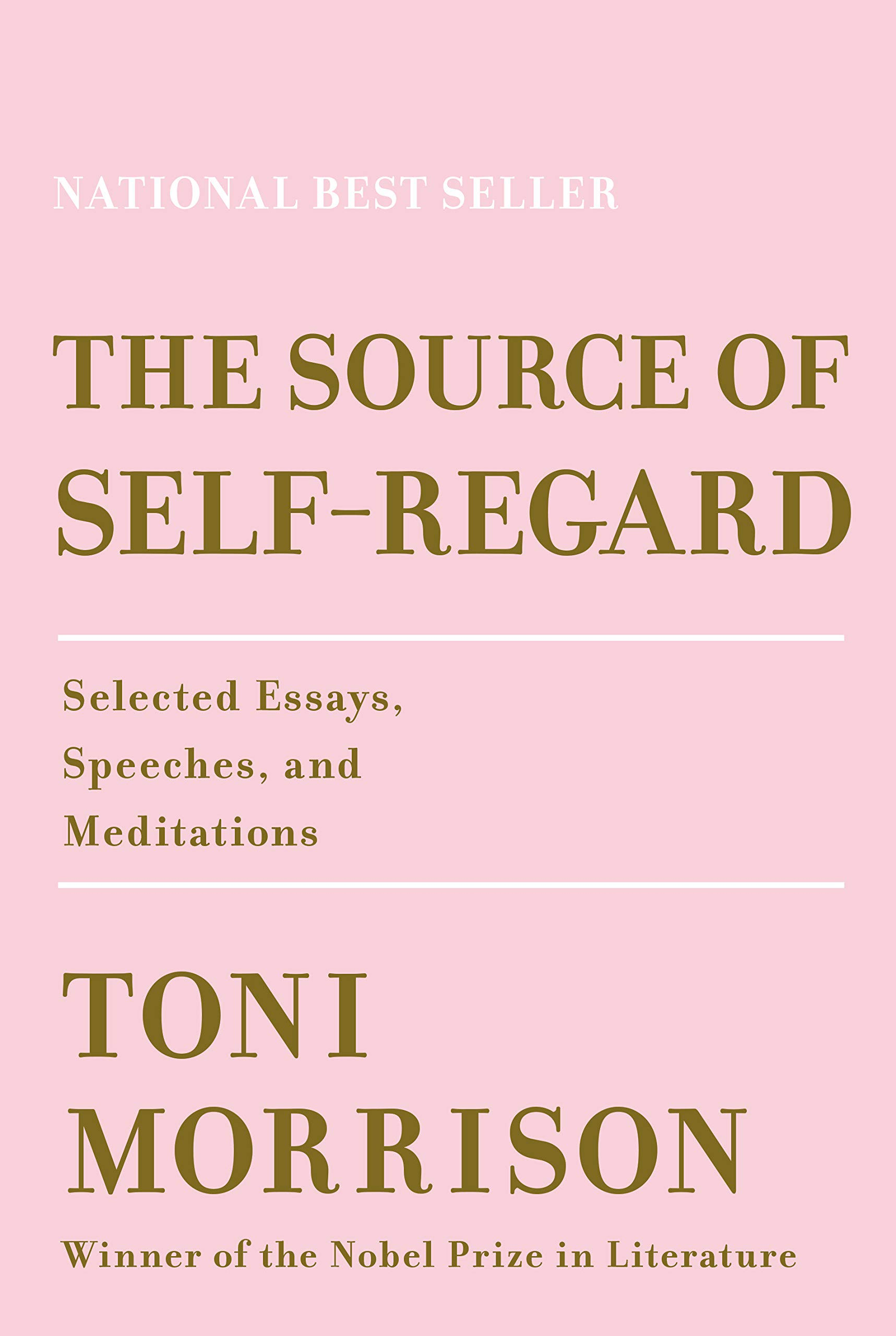The Source of Self-Regard book cover image